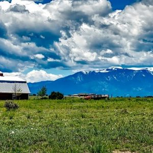 Colorado's Organic Farmland is Growing – and Boosting Incomes Along the Way